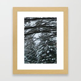 Wonders Framed Art Print