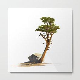 Lone Foxtail Pine Metal Print
