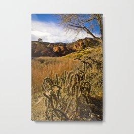 Colorado Rocks #9 Metal Print