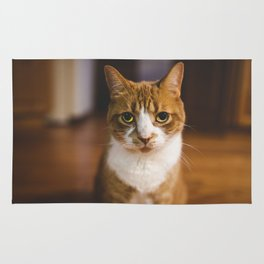 The Cat. Rug