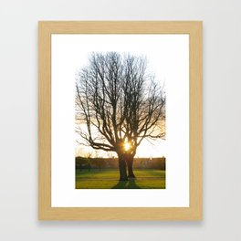 Sunset East Park Hull Framed Art Print