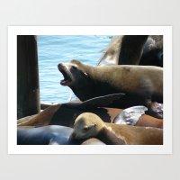 Sea Lion Roaring Art Print