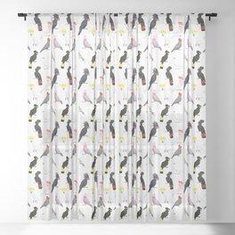 Australian cockatoos pattern Sheer Curtain