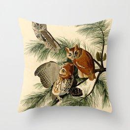 Little Screech Owl Throw Pillow