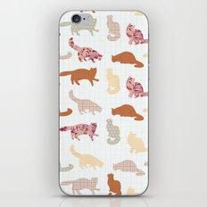 cats pattern iPhone & iPod Skin