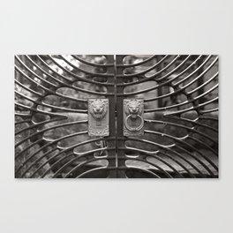 portal, june 2018 Canvas Print