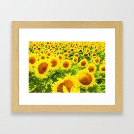 Solsikker Framed Art Print