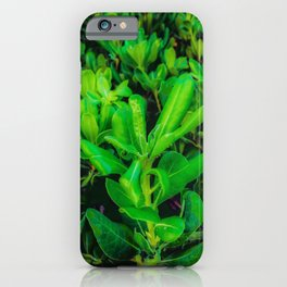 green leaves plant texture background iPhone Case