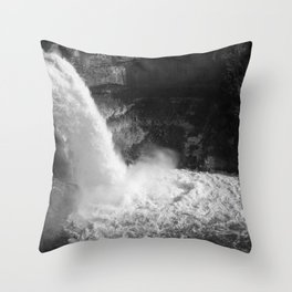 Waterfall in Black and White Throw Pillow