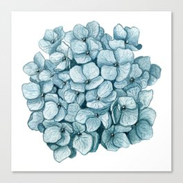 Blue Hydrangea Watercolor Canvas Print