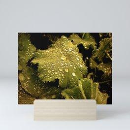 Raindrops and Leaves Photography Mini Art Print