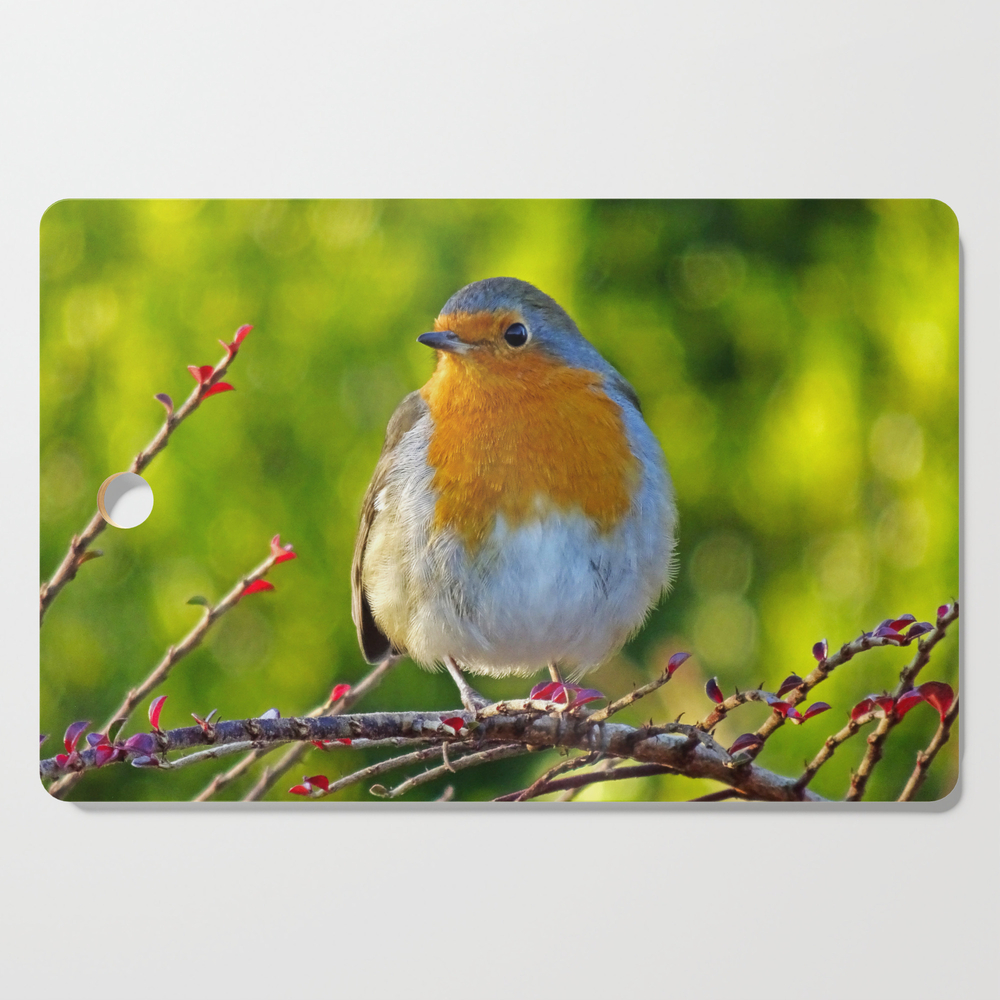 Robin Redbreast Cutting Board by catherineogden (DCB8331014) photo