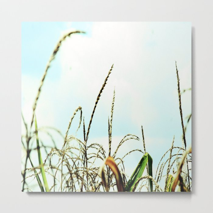 Reach for the Clouds Metal Print