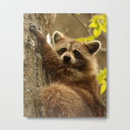 Good Grip Metal Print