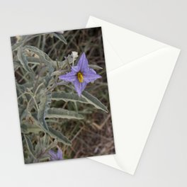 New Mexico Wildflower Stationery Cards