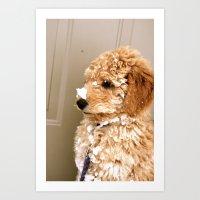 puppy's first snow Art Print