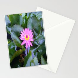 Sun-kissed Lotus blooms and awakens up on a mountain in Vietnam Stationery Cards