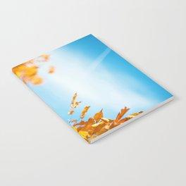 Golden Branch (Color) Notebook