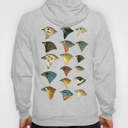 North American Birds Hoody