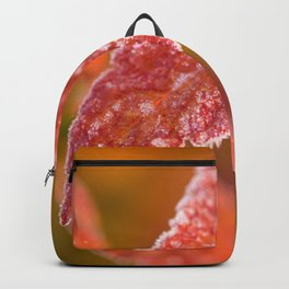 Frosty Red Leaves In The Morning Of October #decor #buyart #society6 Backpack