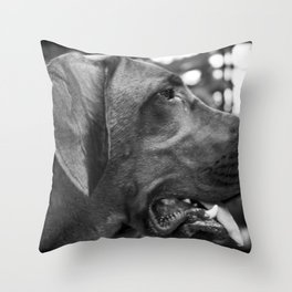 Redbone Throw Pillow