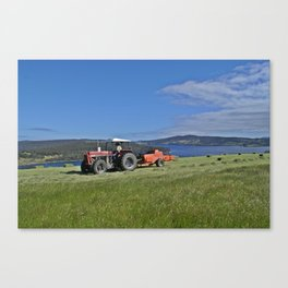 Making Hay While The Sun Shines Canvas Print