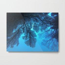fiji fan coral Metal Print