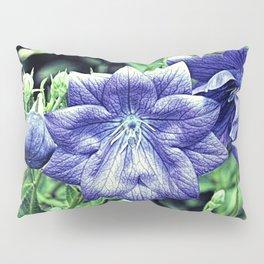 Purple Balloon Flower Floral Art A105 Pillow Sham