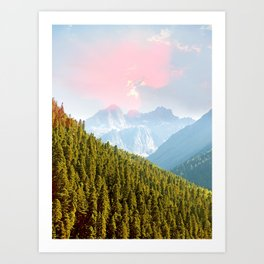 Evergreen #nature #photography Art Print