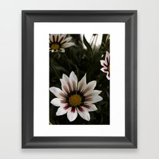 Flowers in summer Framed Art Print