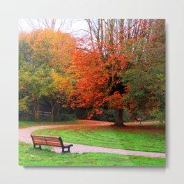 Autumn scenery #8 Metal Print