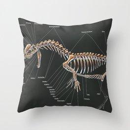 Dilophosaurus Wetherilli Skeleton Study Throw Pillow