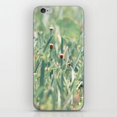 The Grasshoppers Perspective iPhone & iPod Skin