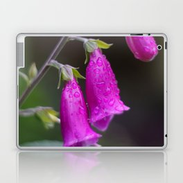 Foxgloves Laptop & iPad Skin