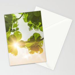 New You Stationery Cards