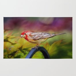 Red Finch Rug