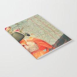 Antarctic Broadcast Notebook