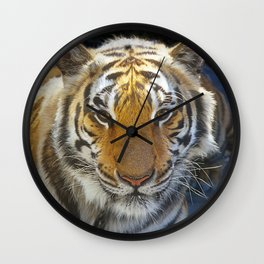 Tiger Face Wall Clock