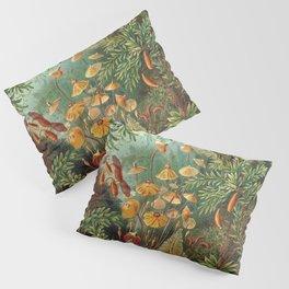 Ernst Haeckel Muscinae Microscopic Landscape Pillow Sham