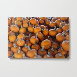 Pumpkins 1 Metal Print