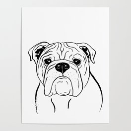 English Bulldog (Black and White) Poster