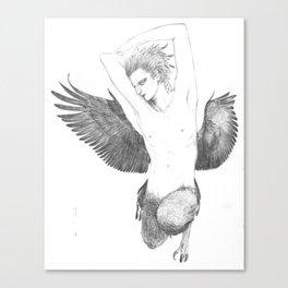 Pithecophaga jefferyi Canvas Print