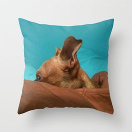 MADiSON (shelter pup) Throw Pillow