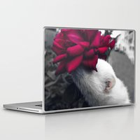 ferret Laptop & iPad Skins featuring Rosy Ferret by Clara J Aira