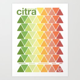 citra single hop Art Print