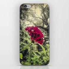 Hello, Tallahassee iPhone & iPod Skin
