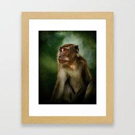 The thinker? Framed Art Print