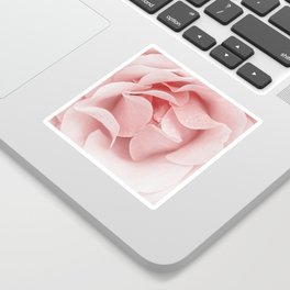 Pink flora Rose Bud- Roses and flowers Sticker