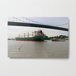 Pochards Under the Anthony Wayne Metal Print