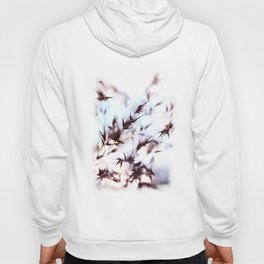 Dream of nature Hoody
